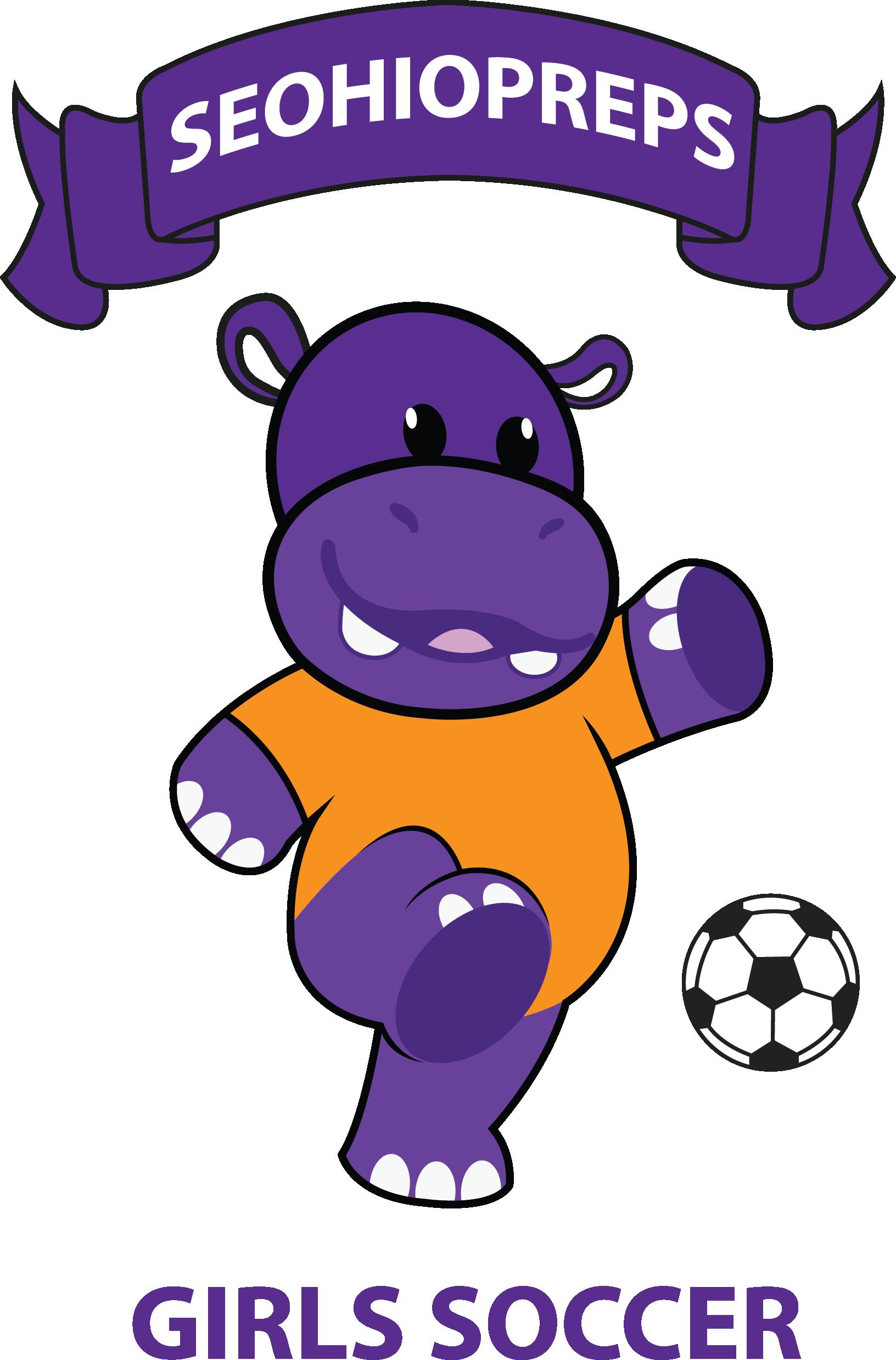 seohiopreps girls soccer