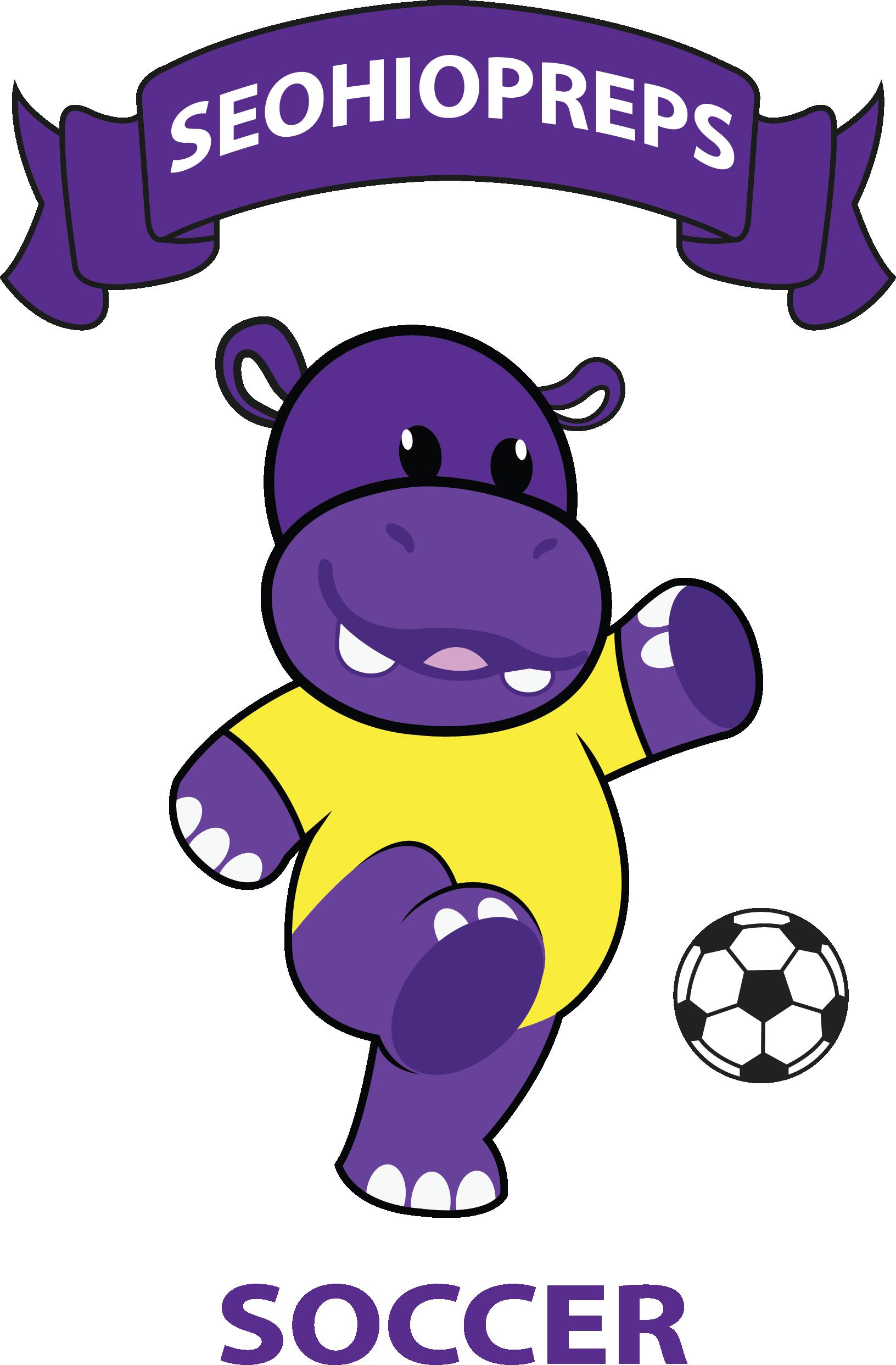 seohiopreps soccer
